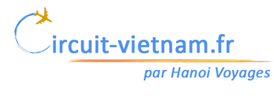 logo circuit vietnam