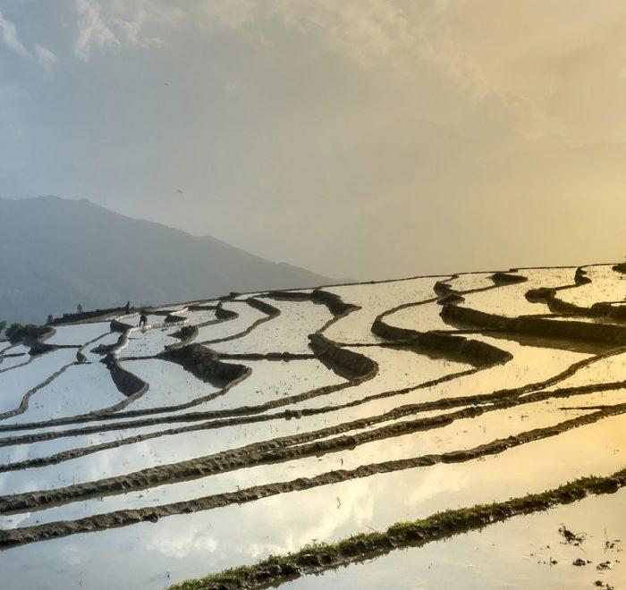 Climat du Vietnam