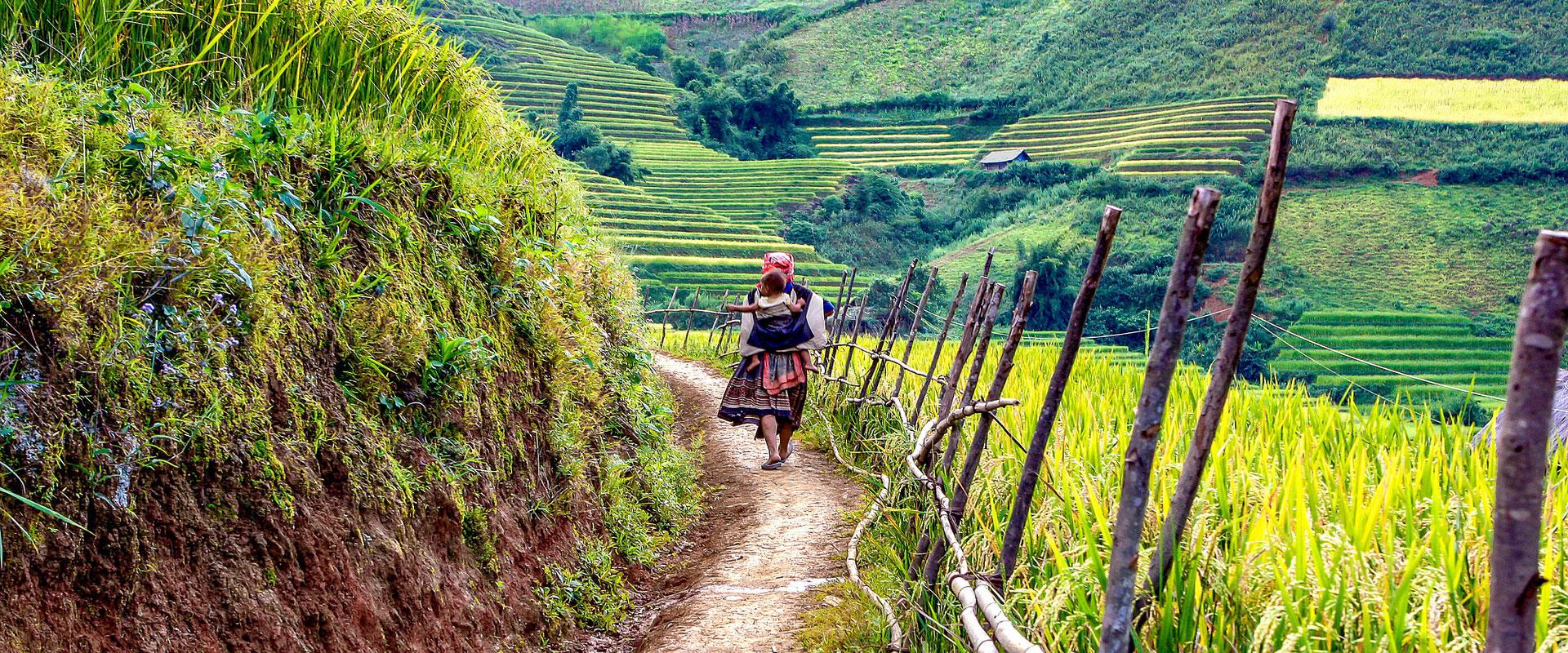 Vietnam - Chemins de traverse