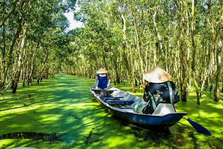 foret indigo delta du mekong