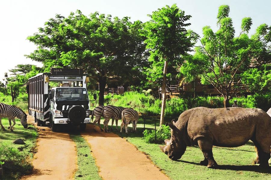 Vinpearl Safari à Phu Quoc