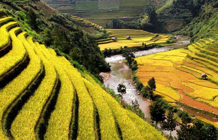 Circuit Vietnam Nord 14 jours