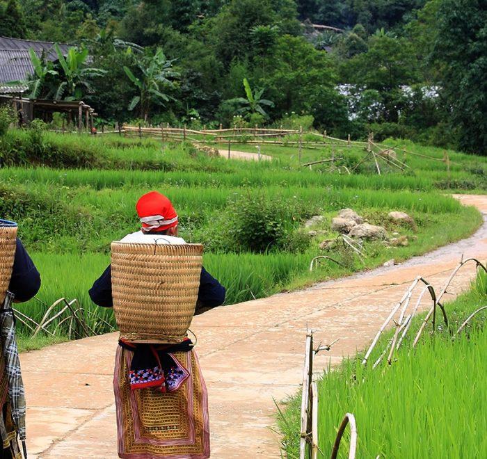 Rencontres des ethnies du Vietnam 20 jours