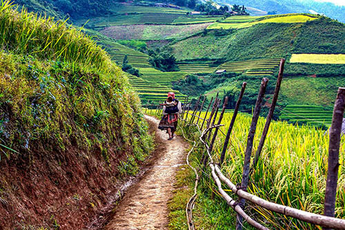 circuit vietnam chemins de traverse